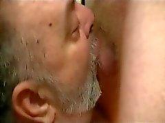 urso papai bcbg foder homens de 35 anos