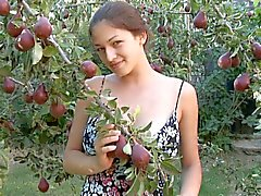Sofi A