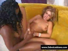 Zebra Lesbians - Sexy ebony lesbians fuck with strap-on toy 12