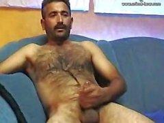 Orient björn - Verdat