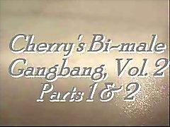 The Absolute Best of amateurs de Bi la FMM - de Cherry platine III