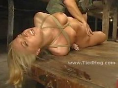 Sexy blonde slut immobilized and bound in leather