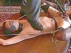 Девушка сексуальная арестован