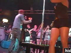 sexy girls dance on the pole feature
