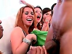 Horny group of party girls sucking male