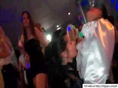 Lesbian hotties fondling each other at a party