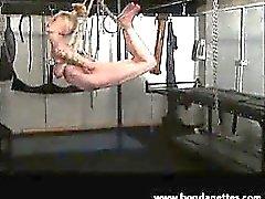 Blonde amatööri subbie girl in köysiripustuksessa bondage