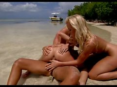 Two wonderful blondes on a tropical beach