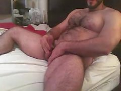 Hot björn KOLLA