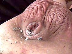 Vids Pequenas Cocks Populares