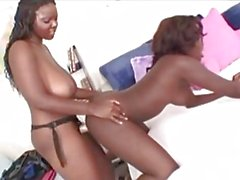Chocolate Sorority Sistas 3 - Cena 1