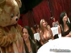Horny babes go crazy rubbing a bear