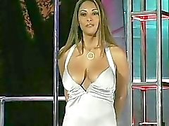 Project Erotica Pornstar Casting Call