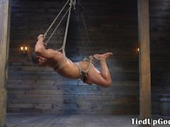 Ripped BDSM dom whips restrained subs cock