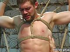 Bound sub roughly tugged by dominant hunk