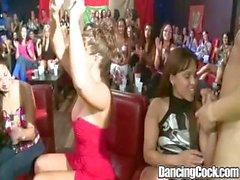 Dancingcock Riesenschwanz BJ Partei