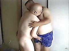 Papais japoneses 2