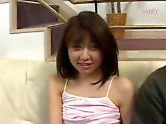 Karvainen japanilainen kusipää ja sohva kiusanteko