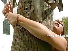 Slave bunden utanför huset från trädet
