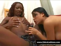 Zebra Girls - Ebony lesbian babes fuck deep strapon toys 17