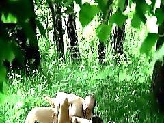 Expuesto puto forma ilegal en el bosque de