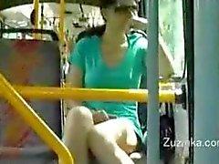 Zuzinka di accarezzarsi su un autobus di