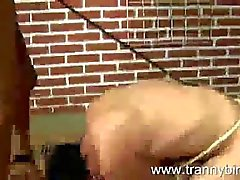 Tranny mistress spanks her new slave