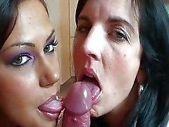 klixen and cipriana sucking cock