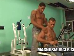 Rick Masone and Charles Russells: Beefy Guys Gym Anal Session