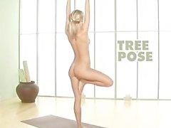 Sara Jean Underwood Playboy's Nude Yoga