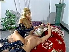 Brittany Andrews - Harem Hooters